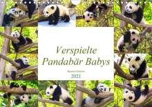 Simone Gatterwe: Pandabär Babys (Wandkalender 2021 DIN A4 quer), Kalender