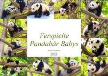 Simone Gatterwe: Pandabär Babys (Wandkalender 2021 DIN A3 quer), Kalender