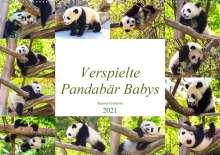 Simone Gatterwe: Pandabär Babys (Wandkalender 2021 DIN A2 quer), Kalender
