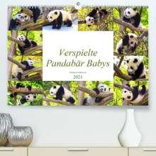 Simone Gatterwe: Pandabär Babys (Premium, hochwertiger DIN A2 Wandkalender 2021, Kunstdruck in Hochglanz), Kalender