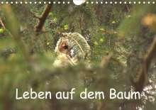 Kevin Andreas Lederle: Leben auf dem Baum (Wandkalender 2021 DIN A4 quer), Kalender