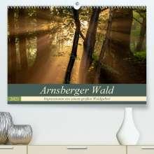 Franz Josef Hering: Arnsberger Wald (Premium, hochwertiger DIN A2 Wandkalender 2021, Kunstdruck in Hochglanz), Kalender