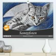 Uschi Felix: Samtpfoten - Katzen in Pastell (Premium, hochwertiger DIN A2 Wandkalender 2021, Kunstdruck in Hochglanz), Kalender