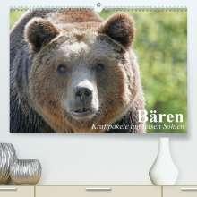 Elisabeth Stanzer: Bären. Kraftpakete auf leisen Sohlen (Premium, hochwertiger DIN A2 Wandkalender 2021, Kunstdruck in Hochglanz), Kalender