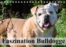 Elisabeth Stanzer: Faszination Bulldogge (Tischkalender 2022 DIN A5 quer), Kalender