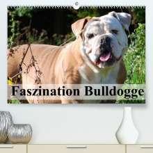 Elisabeth Stanzer: Faszination Bulldogge (Premium, hochwertiger DIN A2 Wandkalender 2022, Kunstdruck in Hochglanz), Kalender