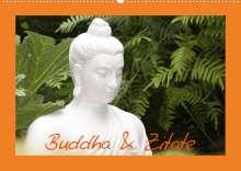 Elisabeth Stanzer: Buddha & Zitate (Wandkalender 2022 DIN A2 quer), Kalender