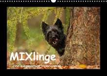 Kathrin Köntopp: MIXlinge (Wandkalender 2022 DIN A3 quer), Kalender