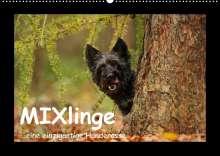 Kathrin Köntopp: MIXlinge (Wandkalender 2022 DIN A2 quer), Kalender