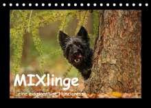 Kathrin Köntopp: MIXlinge (Tischkalender 2022 DIN A5 quer), Kalender
