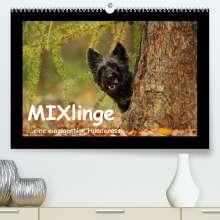 Kathrin Köntopp: MIXlinge (Premium, hochwertiger DIN A2 Wandkalender 2022, Kunstdruck in Hochglanz), Kalender