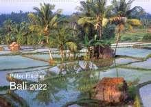 Peter Fischer: Peter Fischer - Bali 2022 (Wandkalender 2022 DIN A2 quer), Kalender