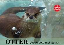Elisabeth Stanzer: Otter. Frech, laut und clever (Wandkalender 2022 DIN A3 quer), Kalender