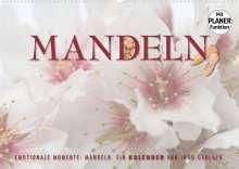 Ingo Gerlach: Emotionale Momente: Mandeln (Wandkalender 2022 DIN A2 quer), Kalender