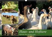 Sabine Löwer: Haus- und Hoftiere (Wandkalender 2022 DIN A3 quer), Kalender