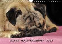 Sonja Hofmann: Alles Mops-Kalender 2022 (Wandkalender 2022 DIN A4 quer), Kalender