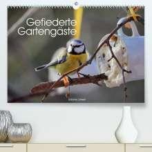 Sabine Löwer: Gefiederte Gartengäste (Premium, hochwertiger DIN A2 Wandkalender 2022, Kunstdruck in Hochglanz), Kalender