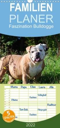 Elisabeth Stanzer: Faszination Bulldogge (Wandkalender 2022 , 21 cm x 45 cm, hoch), Kalender
