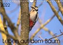 Kevin Andreas Lederle: Leben auf dem Baum (Wandkalender 2022 DIN A4 quer), Kalender
