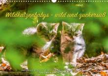 Ingo Gerlach: Wildkatzenbabys - wild und zuckersüß. (Wandkalender 2022 DIN A3 quer), Kalender