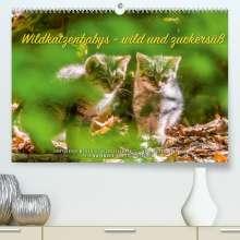 Ingo Gerlach: Wildkatzenbabys - wild und zuckersüß. (Premium, hochwertiger DIN A2 Wandkalender 2022, Kunstdruck in Hochglanz), Kalender