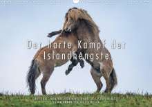 Ingo Gerlach: Der harte Kampf der Islandhengste. (Wandkalender 2022 DIN A3 quer), Kalender