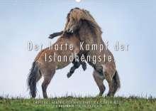 Ingo Gerlach: Der harte Kampf der Islandhengste. (Wandkalender 2022 DIN A2 quer), Kalender