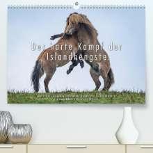 Ingo Gerlach: Der harte Kampf der Islandhengste. (Premium, hochwertiger DIN A2 Wandkalender 2022, Kunstdruck in Hochglanz), Kalender