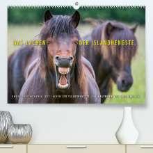 Ingo Gerlach: Das Lachen der Islandhengste. (Premium, hochwertiger DIN A2 Wandkalender 2022, Kunstdruck in Hochglanz), Kalender