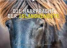 Ingo Gerlach: Die Haarpracht der Islandhengste. (Wandkalender 2022 DIN A2 quer), Kalender