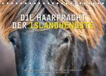 Ingo Gerlach: Die Haarpracht der Islandhengste. (Tischkalender 2022 DIN A5 quer), Kalender