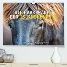 Ingo Gerlach: Die Haarpracht der Islandhengste. (Premium, hochwertiger DIN A2 Wandkalender 2022, Kunstdruck in Hochglanz), Kalender