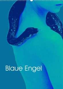 Eike Winter: Blaue Engel (Wandkalender 2022 DIN A2 hoch), Kalender