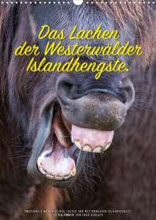 Ingo Gerlach: Das Lachen der Westerwälder Islandhengste. (Wandkalender 2022 DIN A3 hoch), Kalender