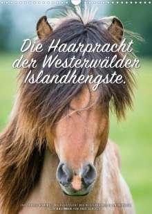 Ingo Gerlach: Die Haarpracht der Islandhengste. (Wandkalender 2022 DIN A3 hoch), Kalender