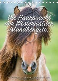 Ingo Gerlach: Die Haarpracht der Islandhengste. (Tischkalender 2022 DIN A5 hoch), Kalender
