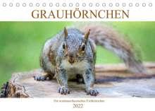 Pixs:Sell@Fotolia: Grauhörnchen-Die nordamerikanischen Eichhörnchen (Tischkalender 2022 DIN A5 quer), Kalender