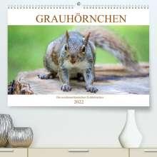 sell@Adobe Stock: Grauhörnchen-Die nordamerikanischen Eichhörnchen (Premium, hochwertiger DIN A2 Wandkalender 2022, Kunstdruck in Hochglanz), Kalender