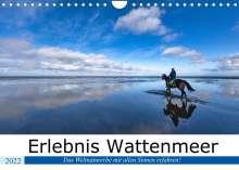 Andreas Klesse: Erlebnis Wattenmeer (Wandkalender 2022 DIN A4 quer), Kalender