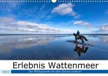 Andreas Klesse: Erlebnis Wattenmeer (Wandkalender 2022 DIN A3 quer), Kalender