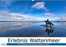 Andreas Klesse: Erlebnis Wattenmeer (Wandkalender 2022 DIN A2 quer), Kalender