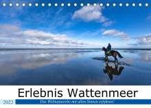 Andreas Klesse: Erlebnis Wattenmeer (Tischkalender 2022 DIN A5 quer), Kalender