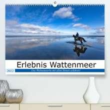 Andreas Klesse: Erlebnis Wattenmeer (Premium, hochwertiger DIN A2 Wandkalender 2022, Kunstdruck in Hochglanz), Kalender