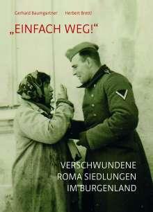 "Gerhard Baumgartner: ""Einfach weg!"", Buch"