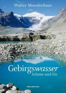 Mooslechner Walter: Gebirgswasser, Schnee und Eis, Buch