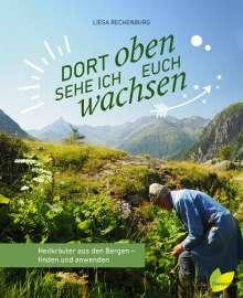 Liesa Rechenburg: Dort oben sehe ich euch wachsen, Buch