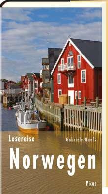 Gabriele Haefs: Lesereise Norwegen, Buch
