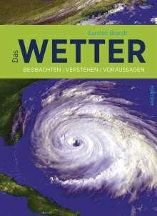 Karsten Brandt: Das Wetter, Buch