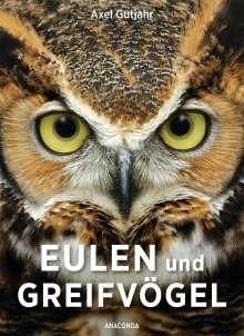 Axel Gutjahr: Eulen und Greifvögel, Buch