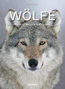 Axel Gutjahr: Wölfe, Buch